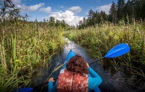 river kayaking day trip